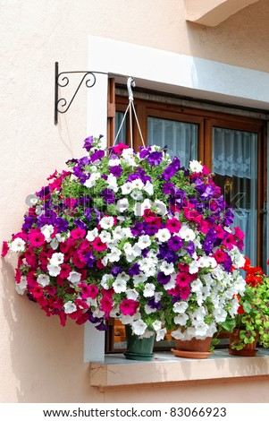 An outside basket filled with vibrant multicolored petunias.