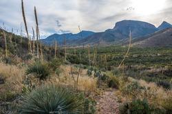 An overlooking view of Kartchner Caverns NP, Arizona