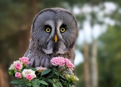 an owl with a bunch of flowers as a present is looking into the camera