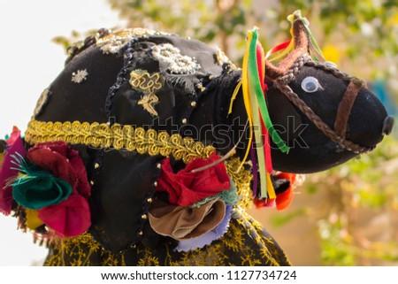 An ox representation in Brazilian Northeastern traditional dance: boi-bumba, bumba-meu-boi, boi-calemba.
