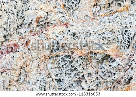 An texture from a close up of coral rock.