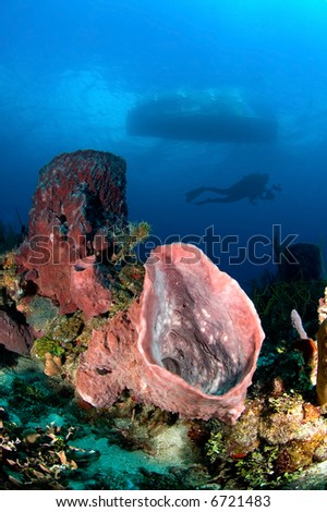 An underwater photographer swims past a dive boat and very beautiful reef barrel sponge in the Caribbean.