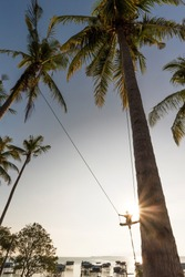 An unidentified kid is playing the swing where the ropes are tightened to coconut trees with background of sea gypsy settlement in Bodgaya Island, Sabah, Malaysia.