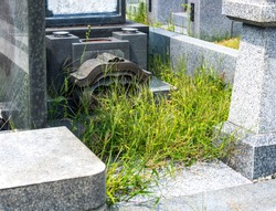 An unmaintained grave of grass bows.