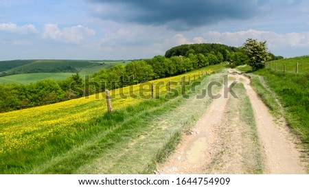 An unpaved track runs along the scarp ridgeway of the Cranborne Chase chalk hills in south west Wiltshire. Stock photo ©