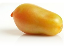 An unripe green tomato on a light background