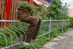 An unusual flower pot. Amazing and original flower bed of brown trousers. The conceptual idea of using old things without waste and without recycling. Use old things to create coziness.