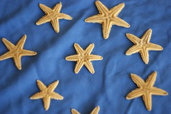 an unusual six-pointed starfish looking like a six pointed star among five-pointed starfish. Leadership, uniqueness, think different, teamwork business success. different concept
