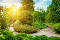 An urban garden with lush vegetation, stone path and decorative staircase. Cozy summer evening.