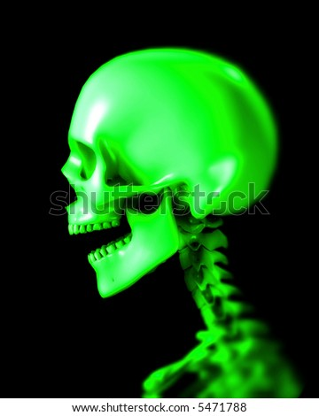 An x ray image of a person in which you can see the skull. A suitable medical or Halloween based image.