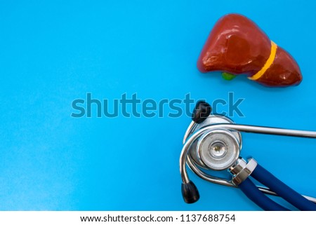 Anatomic study model of liver or hepar and stethoscope on blue background occupy half of photo, in second half - empty space for titles. Medical concept photo for use in hepatology, surgery, oncology #1137688754