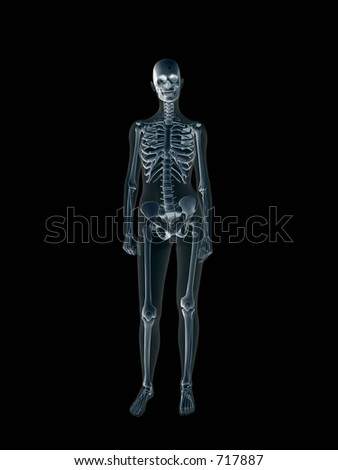 Anatomically correct Xray, x-ray of the human female body, woman. 3D render, illustration over black.  View from front. Different body parts can be requested via forum.
