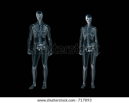 Anatomically correct Xray, x-ray of the human male body, man and woman. 3D render, illustration over black. View from front.  Different body parts can be requested via forum.
