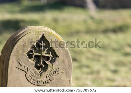 Ancestry and genealogy. Ancient gravestone inscribed with in memory of. Tracing a family tree using old cemetery headstones. Grave yard stone engraving. Blurred background with copy space. #758989672