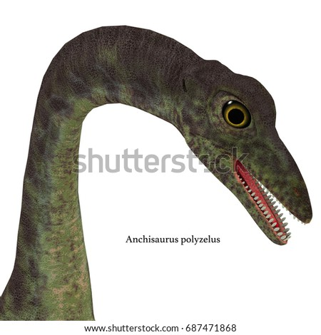 Shutterstock Anchisaurus Dinosaur Head with Font 3d illustration - Anchisaurus was a omnivorous prosauropod dinosaur that lived in the Jurassic Periods of North America, Europe and Africa.