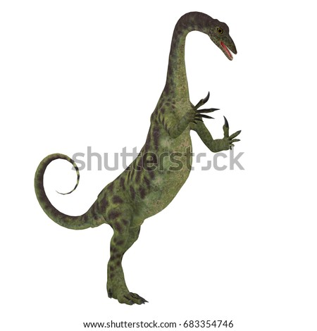 Shutterstock Anchisaurus Dinosaur on White 3d illustration - Anchisaurus was a omnivorous prosauropod dinosaur that lived in the Jurassic Periods of North America, Europe and Africa.