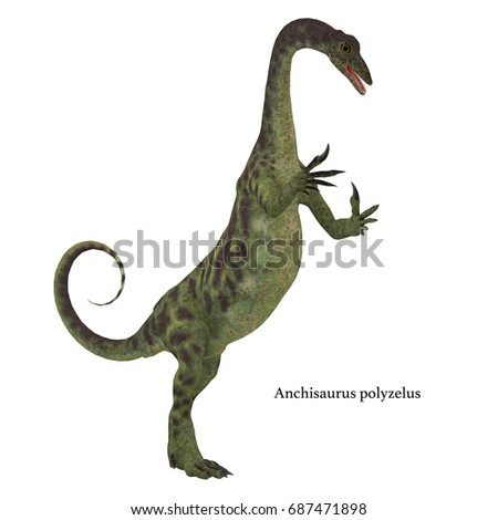 Shutterstock Anchisaurus Dinosaur on White with Font 3d illustration - Anchisaurus was a omnivorous prosauropod dinosaur that lived in the Jurassic Periods of North America, Europe and Africa.
