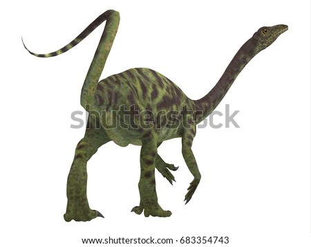 Shutterstock Anchisaurus Dinosaur Tail 3d illustration - Anchisaurus was a omnivorous prosauropod dinosaur that lived in the Jurassic Periods of North America, Europe and Africa.
