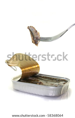 anchovies on a fork with canned before a white background