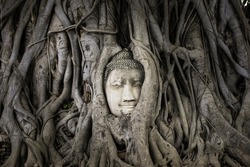 Ancient Buddha head in tree roots in Ayutthaya