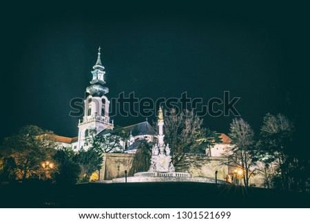 Ancient castle and Plague column, Nitra, Slovak republic. Night scene. Cultural heritage. Architectural theme. Analog photo filter with scratches.
