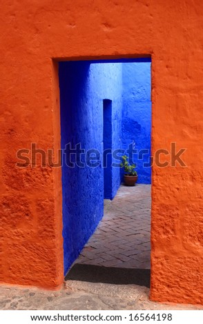 ancient colorful entrance door and green plant in vase