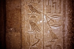 Ancient Egyptian hieroglyphs with the image of different birds