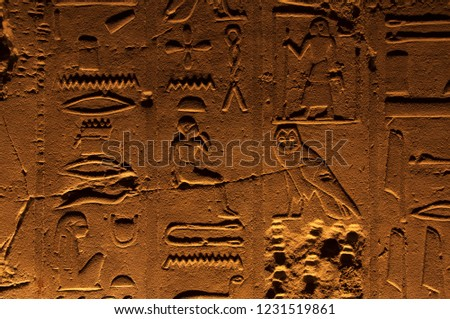 Ancient egyptian stone carvings on the walls of Luxor Temple in Egypt, with pictures of owl, eye, pharaoh figures and hieroglyphs symbols