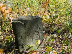 Ancient gravestone, forgotten in a forest.