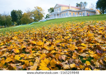 Ancient manor outside the city. Autumn in the Park, defoliation, yellow leaves. Walking along the city streets and alleys of the Park