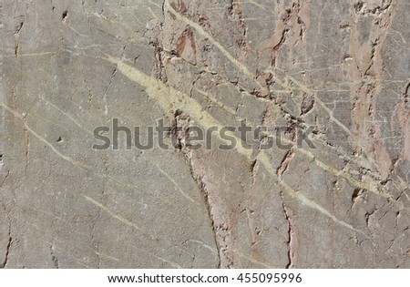 Ancient marble slab background from St Mark Basilica in Venice  #455095996