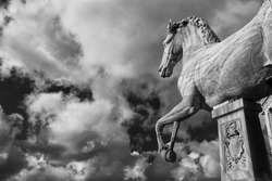 Ancient roman marble statue of an horse at the top of Capitoline Hill in Rome, dated back to the 1st century BC (Black and White)