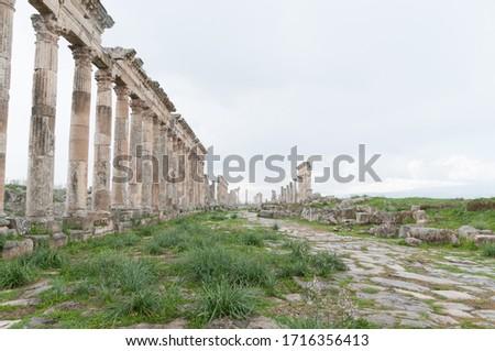 ancient Roman ruins of apamea in Syria
