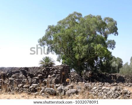 ancient ruins of Yehudiya village