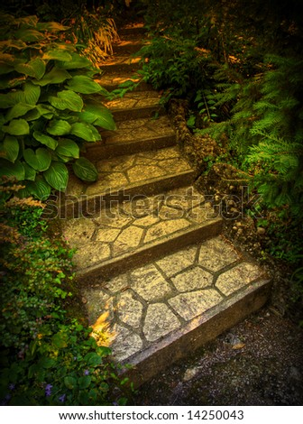 ancient stone stair in the nature