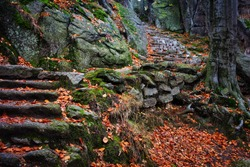Ancient stone stairs going up on mountain slope covered with fallen leaves in autumn, Chojnik, Poland