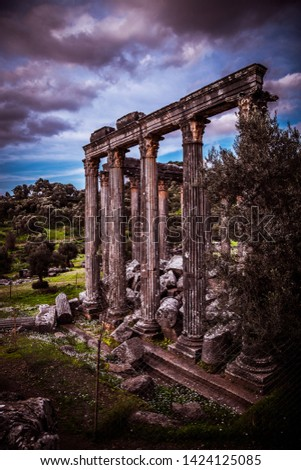 Ancient temple from the ancient city of Euromos