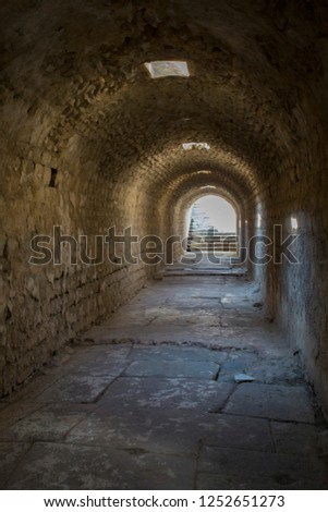Ancient underground passage with arched arches upright position. #1252651273