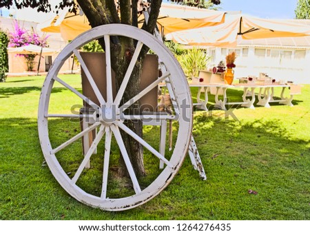 ancient white wooden wheel resting on a tree in a backyard of a reception hall for ceremonies