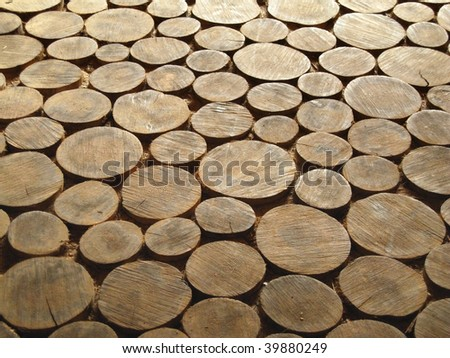 ancient wood circle pattern perspective