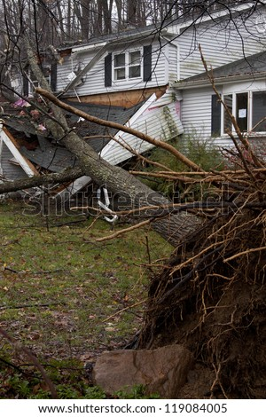 ANDOVER, NJ - OCT 30: An uprooted tree laying across the front porch of a home after Hurricane Sandy made landfall in the northeast region of the US in Andover, New Jersey on October 30, 2012.