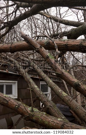 ANDOVER, NJ - OCT 30: Several trees lay across the roof of a home after Hurricane Sandy made landfall in the northeast region of the US in Andover, New Jersey on October 30, 2012.