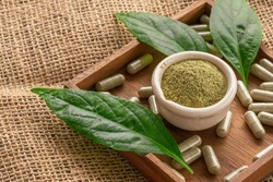 Andrographis Paniculata extract powder in a white cup with herbal capsules and leaves in a wooden saucer on a sackcloth.
