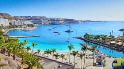 Anfi beach with palm trees - Island of Gran Canaria, Spain