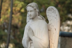 angel are generally a supernatural being in religions and mythologies.