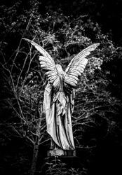 Angel gravestone full length back view in black and white