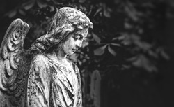angel statue in cemetery, beautiful tombstone. sad angel. concept of memory, religion, condolence. mourning card or obituary. black-white tone. copy space