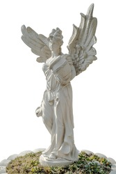 angel statue long shot isolated on white background