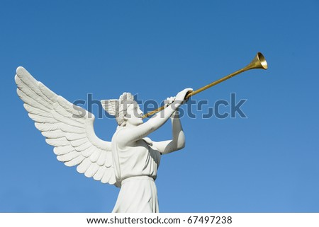 Angel trumpeter isolated against clear blue sky - stock photo