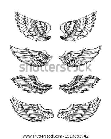 Angel wings. Abstract black winged design. Eagle bird wing hand drawn isolated set